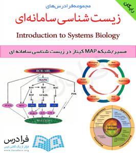 فرادرس مسیر/شبکه MAP کیناز در زیست شناسی سامانه ای
