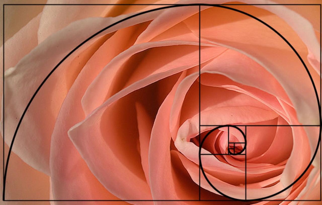 برنامه محاسبه عدد فیبوناچی بعد از یک عدد -- راهنمای کاربردی